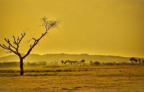 חקלאות ושינויי האקלים – חלק א'