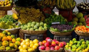 הנחיות התזונה של ברזיל- הפורום הישראלי לתזונה בת קיימא