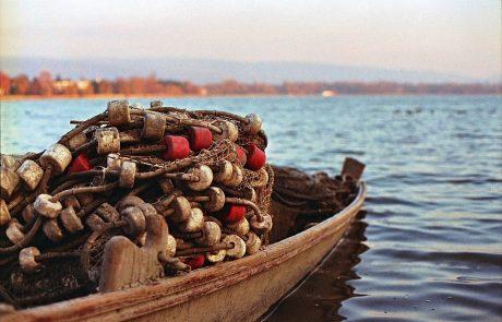 מפגש ספטמבר 2016 – דיג ודגים בישראל