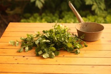 עשבים שוטים או צמחים שיתרונותיהם טרם התגלו?