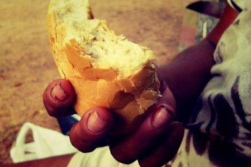ייצור של יותר מדי מזון הוא מה שמרעיב את העולם